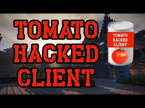 TOMATO HACKED CLIENT vs BADLION G-CHEAT PROTECTION!