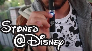 Stoned at Disneyland Ep8 - Roger Rabbits Acid Trip