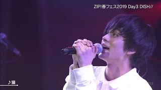Cover images Neko 猫 - DISH// live