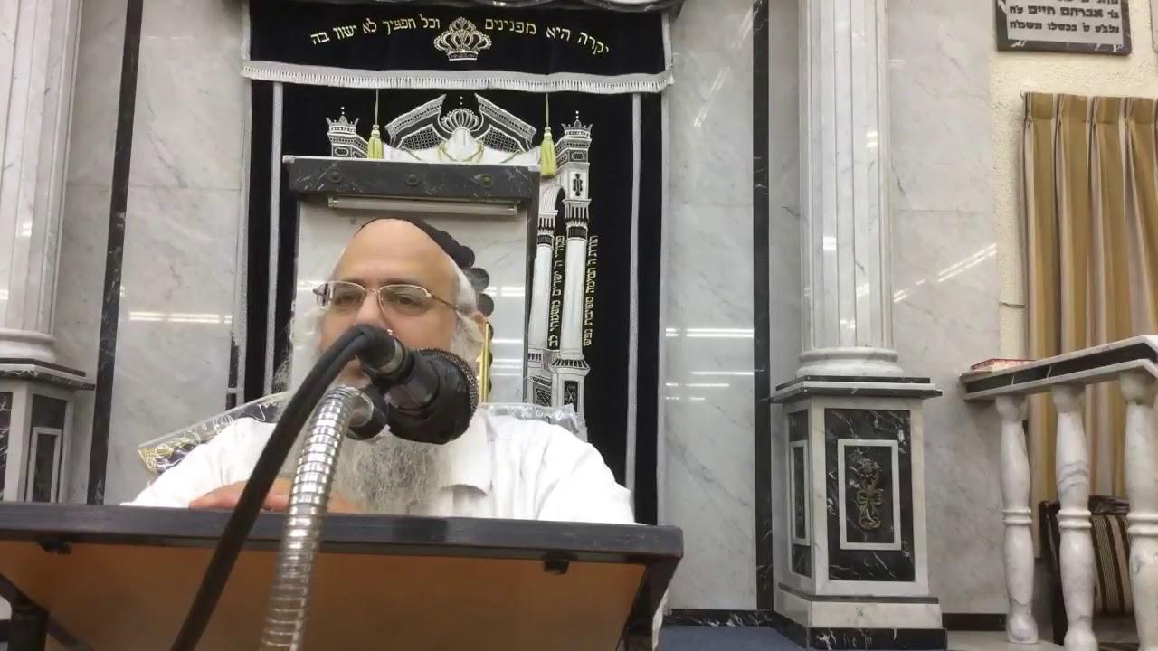 הרב שלמה לוינשטיין   פרשת כי תצא אלול התשעח   2018