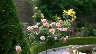 Kingswell Formal Garden