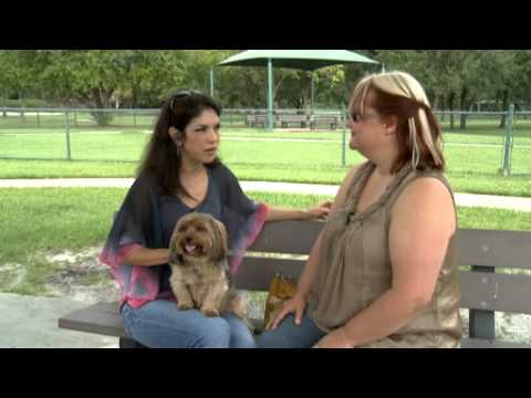 Summer Health Tips-To keep your pet healthy!