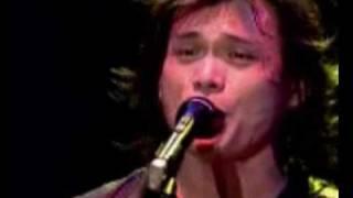 Wu Bai - Shu Zhi Gu Niao (live)