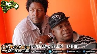 Chaka Demus & Pliers - Tek It In [50/50 Riddim] Star$truck Records   Reggae 2015