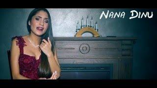 NANA DINU - POVESTEA VIETII MELE + BONUS COLAJ VIDEO HITS