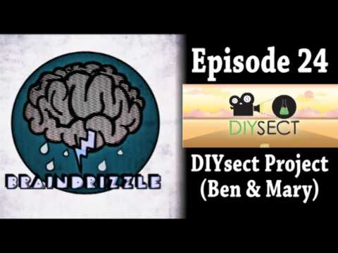 Braindrizzle Ep24 - DIYsect Project