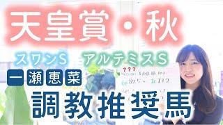 【天皇賞・秋】女王に挑むべし!牝馬に大注目!恵菜の調教推奨馬