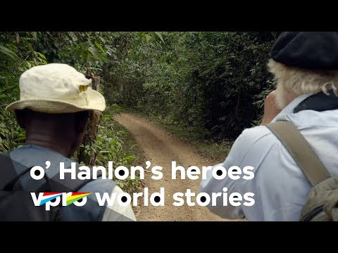 Looking for Gorillas in the Gabon jungle - O'Hanlon's Heroes