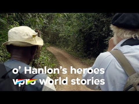 Looking for Gorillas in the Gabon jungle - O'Hanlon's Heroes