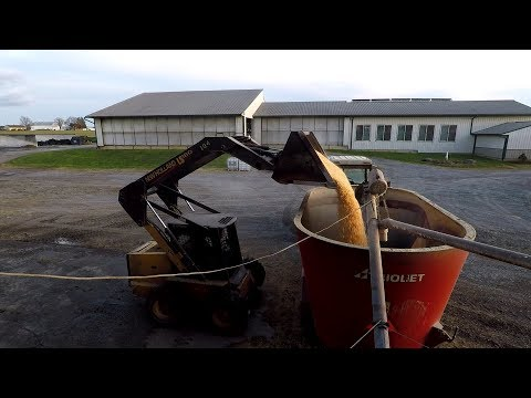 Day Of Dairy Farming | Milking, Feeding, Fixing, Chores