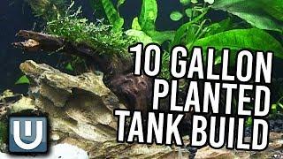 10g planted   aquarium build