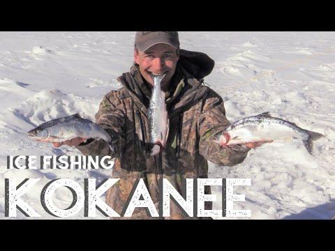 ICE FISHING KOKANEE SALMON {Catch, Clean, Cook} Blackened Style. Eleven Mile Reservoir CO