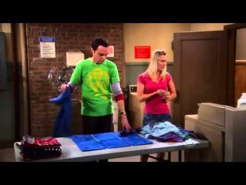 The Big Bang Theory - The Bad Fish Paradigm