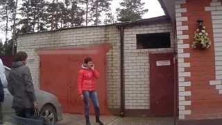 Покупка щенка Московская сторожевая в г.Сельцо Брянская обл.