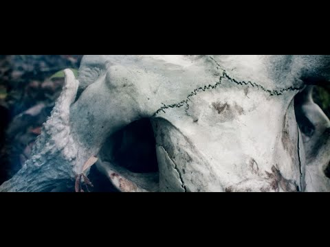 Within Nostalgia - Death Lifes' Lover (Official Video)