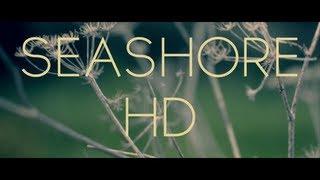 'Seashore' HD cinematic video
