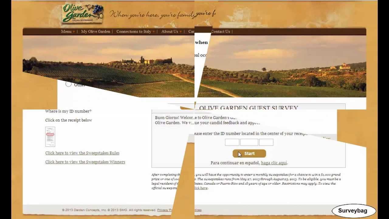 Olive garden survey com