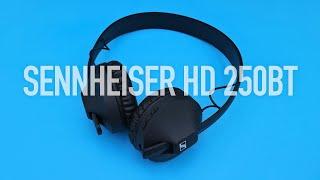 Sennheiser HD 250BT Review