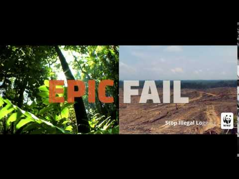 Epic Fail: Deforestation