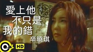 辛曉琪 Winnie Hsin【愛上他不只是我的錯 It's not only my fault to love you】Official Music Video