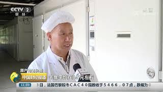 [中国财经报道]原产地访价格 养殖户扩大规模 鸡肉后市价格或将平稳  CCTV财经