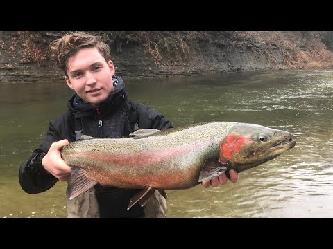 Winter Steelhead Fishing In Erie, Pennsylvania!