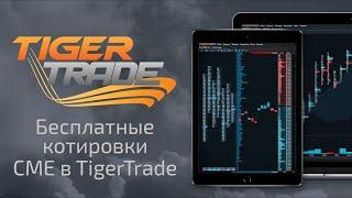 Бесплатные реальные котировки с биржи CME в TigerTrade