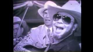 Baixar Hank Williams Jr - Tear In My Beer (Official Music Video)