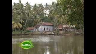 success story of a woman farmer in vegetable cultivation