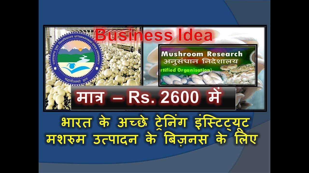 Cultivation Of Mushroom Training Institutes In India For Mushroom Farming  Business