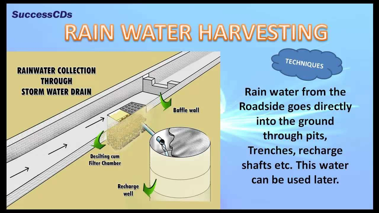 Importance of Water - CBSE NCERT Science - YouTube