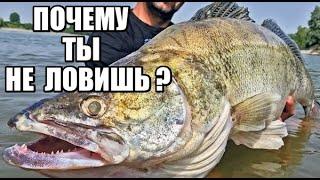 Рыбалка на Спиннинг почему ТЫ НЕ ЛОВИШЬ РЫБУ Судак на НАРОДНЫЕ ПРИМАНКИ