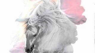 White Horse - Transfer