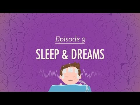 To Sleep, Perchance To Dream: Crash Course Psychology #9