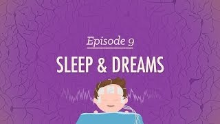 To Sleep, Perchance to Dream - Crash Course Psychology #9