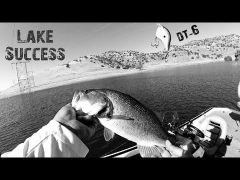 Fishing Lake Success California Lake Webb