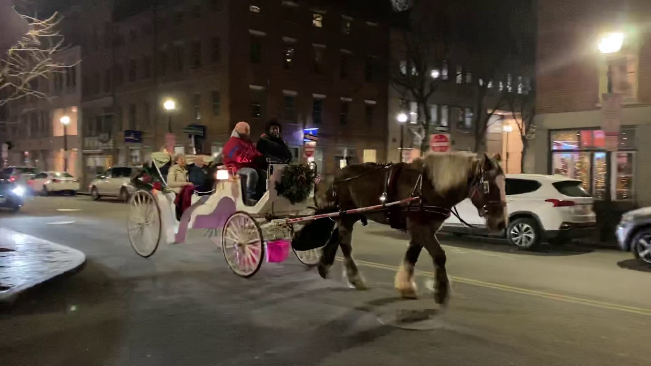Horse and Carriage Tours in Boston
