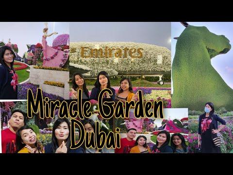 Welcome to Miracle Garden 2020/ Dubai UAE