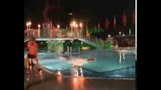 Zaton Holiday Resort - animation game