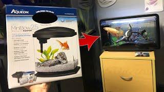 UPGRADING My BETTA FISH TANK!!!