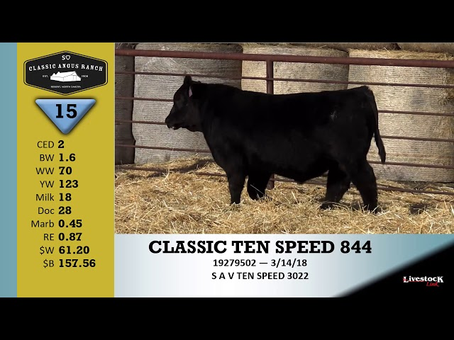 Classic Angus Ranch Lot 15