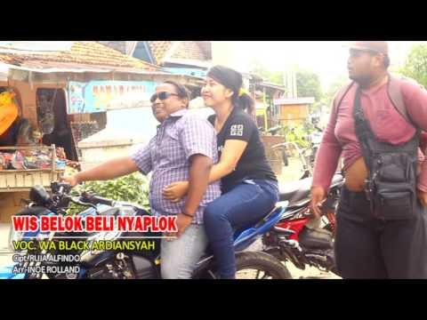 Lagu Tarling Terbaru Belok bli nyaplok Wa Black Erika FM by Alfindo Assalam