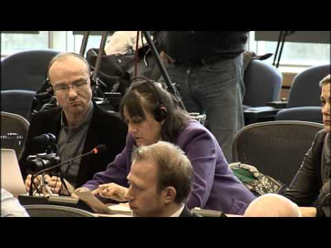 Press Conference On Situation In Ukraine By European Parliament | Brussels, 19.02.14 (full Video)