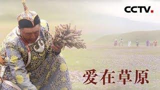 [中华优秀传统文化]爱在草原| CCTV中文国际