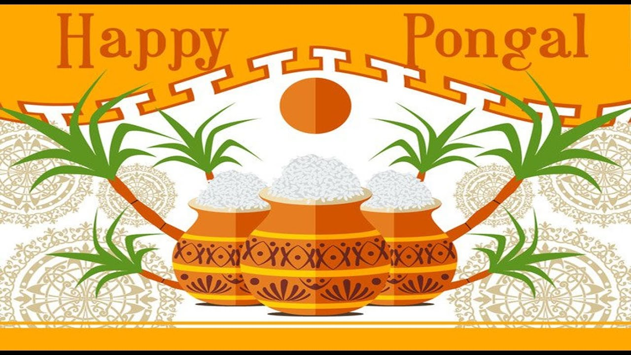Happy pongal 2018 greetings wishes whatsapp video e card free happy pongal 2018 greetings wishes whatsapp video e card free download hd video youtube m4hsunfo