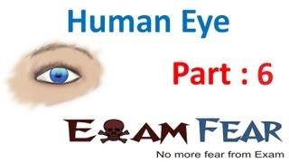 Physics Human Eye part 6 (Rainbow formation) CBSE class 10 X