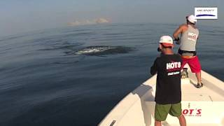 Monster GT Breakoff Hallaniyat Islands Southern Oman