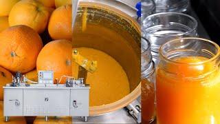 FRIGOJOLLINOX srl BM50TOP Banco multifunzione per marmellate confetture conserve sott'oli ecc..