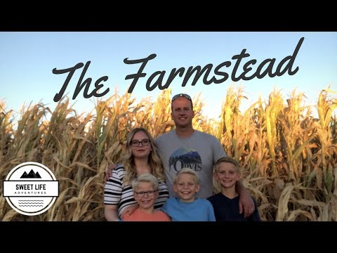 Autumn Fun | The Farmstead in Meridian Idaho, Corn maze, Apple launcher, Candy Canon, Pig races