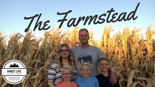 Autumn Fun | The Farmstead In Meridian Idaho, Corn Maze, Apple Launcher, Candy Canon, Pig Races